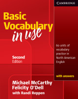 vocabularyinuse